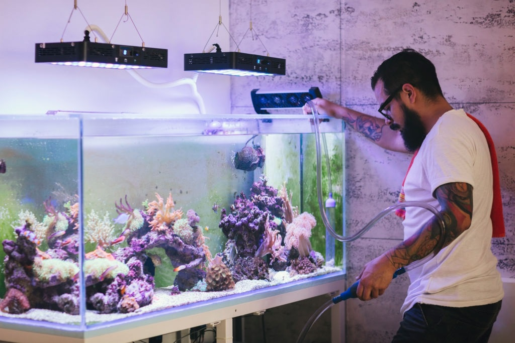 Best LED Aquarium Lighting For Plants & SPS Corals